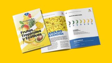 Ecuadorian Export Company